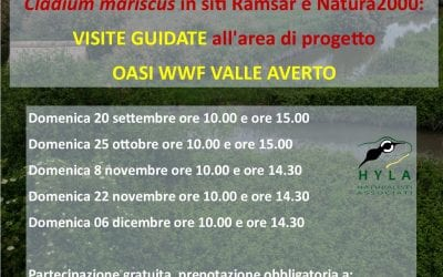Life Forestal a Valle Averto – NUOVE DATE